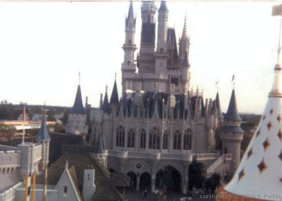 Back side of Cinderella Castle as seen from the sky buckets