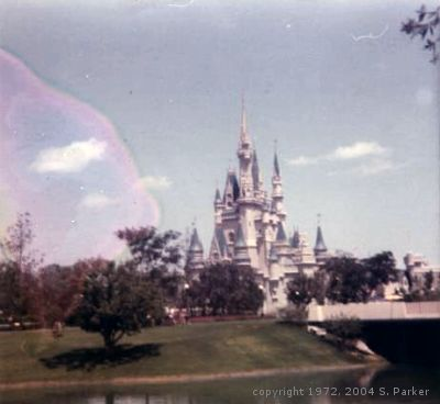 View of Cinderella Castle